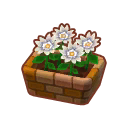 Potted White Dahlias PC Icon.png
