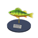Yellow Perch Model