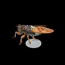 Brown Cicada Model