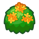 Yellow-Tea-Olive Bush