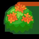 Orange-Tea-Olive Bush