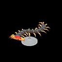 Centipede Model