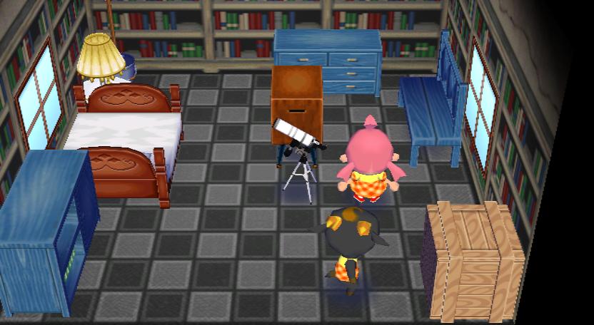 Interior of Nan's house in Animal Crossing: City Folk