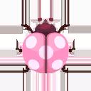 Pink Flower Ladybug PC Icon.png