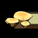 Flat Mushroom