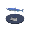 Anchovy Model