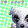 K.K. Swing NL Unused Texture.png