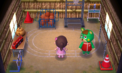 Interior of Charlise's house in Animal Crossing: New Leaf