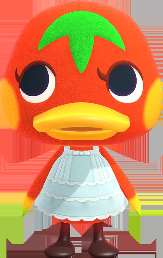 Ketchup Animal Crossing Wiki Nookipedia