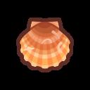 Scallop (sea creature)