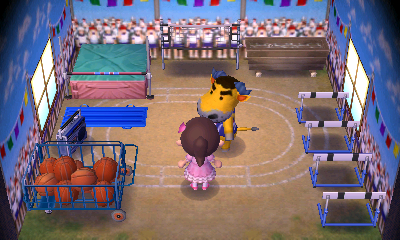 Interior of Coach's house in Animal Crossing: New Leaf