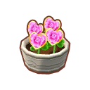 Potted Pink H. Roses PC Icon.png