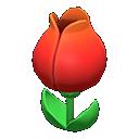 Tulip Surprise Box