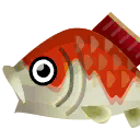 King Koi PC Icon.png