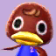 Bill's picture in Animal Crossing: New Leaf