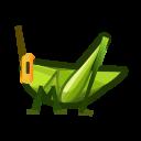 Long Locust