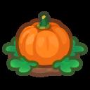Ripe Orange-Pumpkin Plant