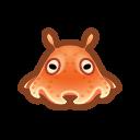 Umbrella Octopus