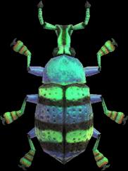Blue Weevil Beetle NH.png