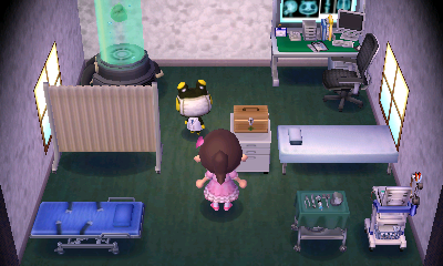 Interior of Raddle's house in Animal Crossing: New Leaf