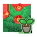 Red-Camellia Start
