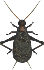 Bell Cricket NH.png