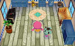 Interior of Mint's house in Animal Crossing: Wild World