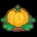 Ripe Yellow-Pumpkin Plant