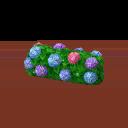 Hydrangea Hedge PC Icon.png