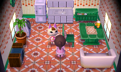 Interior of Merry's house in Animal Crossing: New Leaf