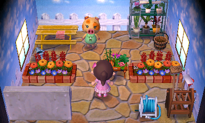 Interior of Maggie's house in Animal Crossing: New Leaf