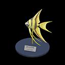 Angelfish Model