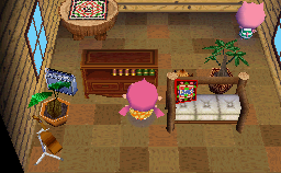 Interior of Curly's house in Animal Crossing: Wild World