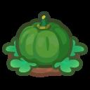 Ripe Green-Pumpkin Plant