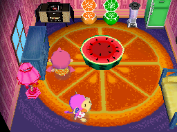 Interior of Nana's house in Animal Crossing: Wild World