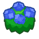 Blue-Hydrangea Bush