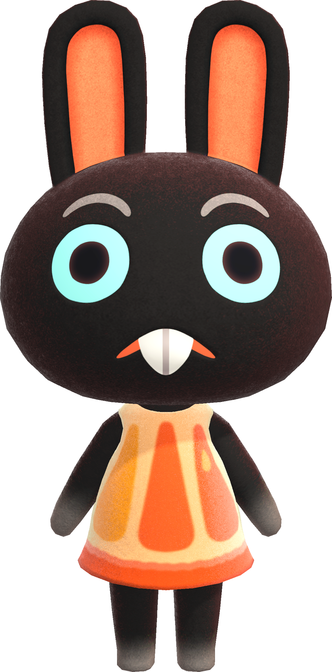 Cole Animal Crossing Wiki Nookipedia