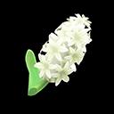 White Hyacinths