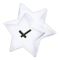 Star Clock (White) NH Icon.png