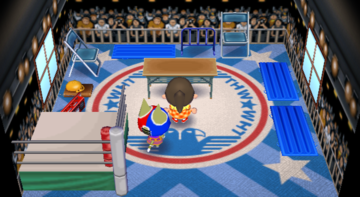 Interior of Stinky's house in Animal Crossing: City Folk