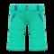 Ski Pants (Turquoise) NH Icon.png