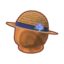 Hydrangea Hat PC Icon.png