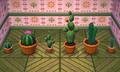 NL Cactus Set.png
