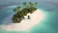 Tom Nook Deserted Island Twitter.jpg