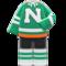 Ice-Hockey Uniform (Green) NH Icon.png