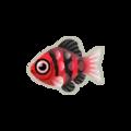 Black Ruby Barb PC Icon.png