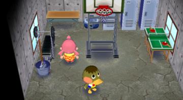 Interior of Deena's house in Animal Crossing: City Folk
