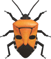 Man-Faced Stink Bug NH.png