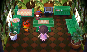 Interior of Drift's house in Animal Crossing: New Leaf