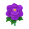 Purple Peony PC Icon.png